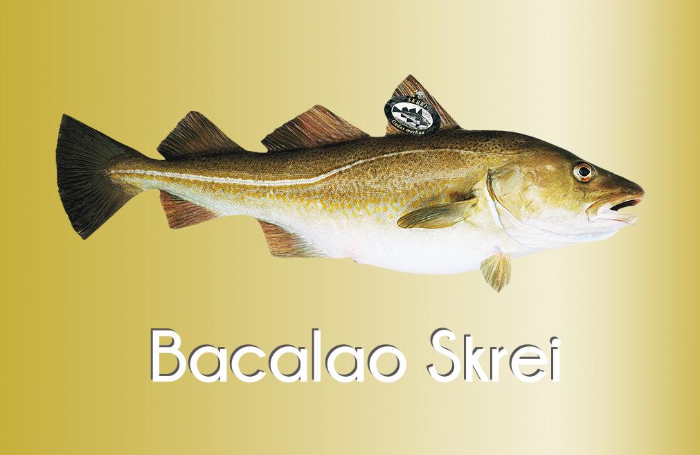 ¿Qué es el bacalao Skrei?