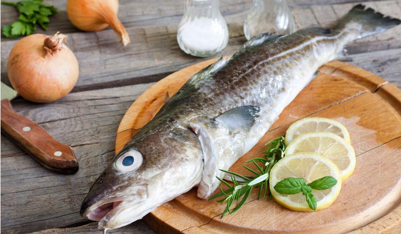 El bacalao: un superalimento